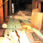 Attic Cleanup–and severed ladies' heads.