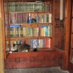 Bookshelf Cat…