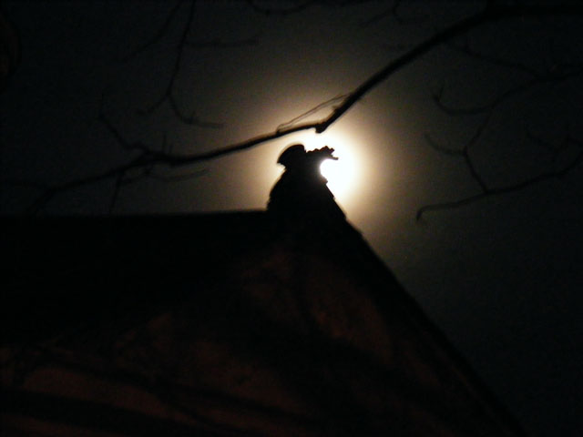 Roof Dragon got mounted on a full moon night!