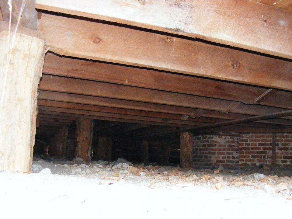 Some of the framing under the house.
