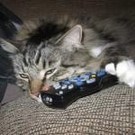 Controlling the remote control…